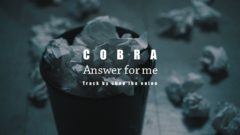 COBRA / Answer for me (Track by chop the onion)